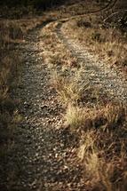 A dirt path
